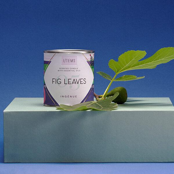 fig-leaves-img2