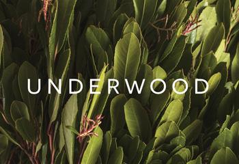 Името на нашият аромат — 06/UNDERWOOD
